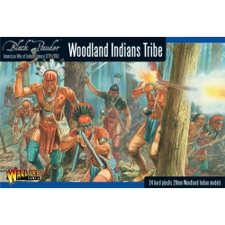 Woodland Indian Tribes , 302015501
